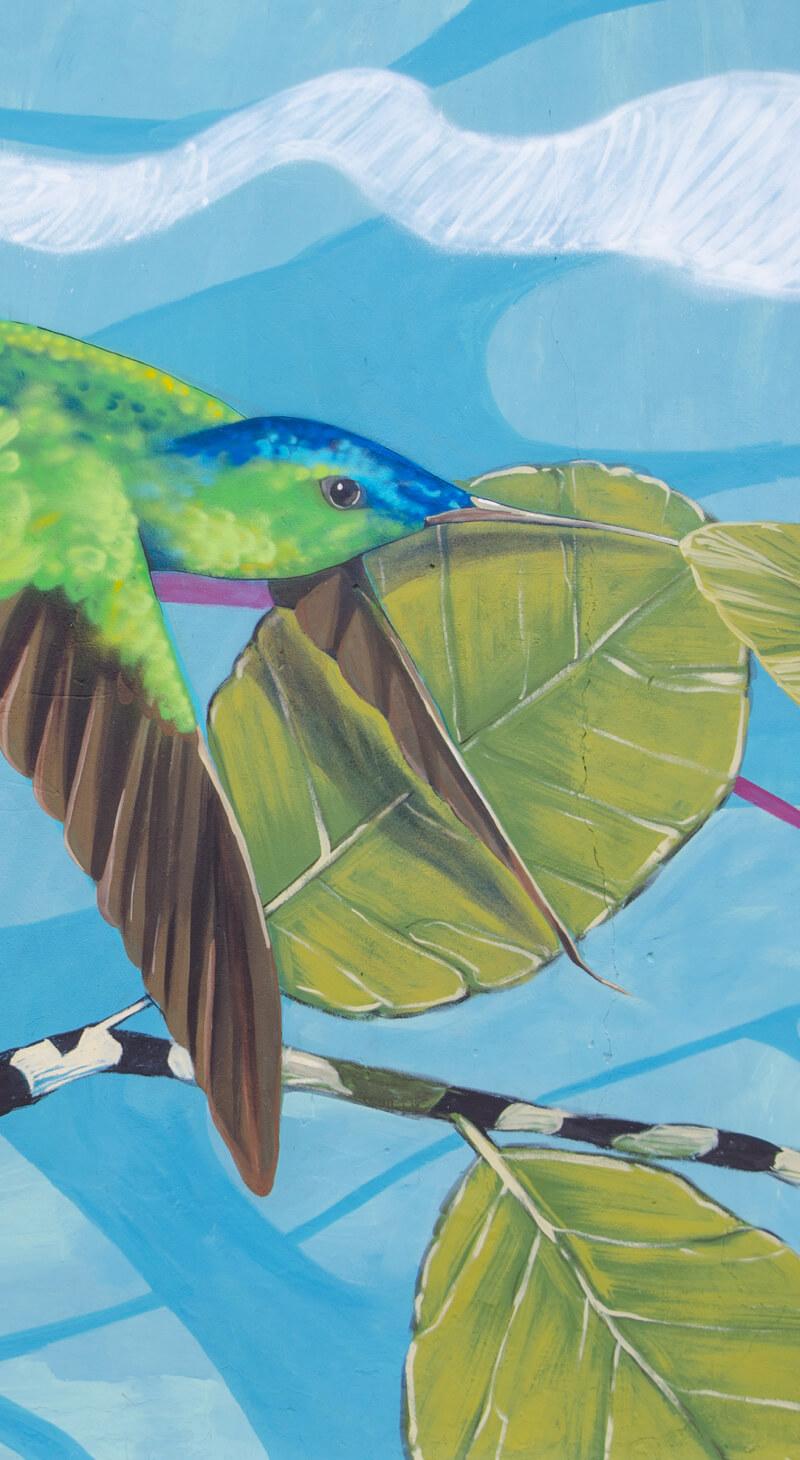 Vuelo de colibrí